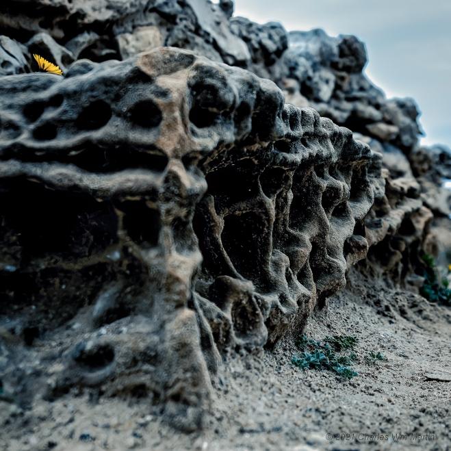 desertification defined